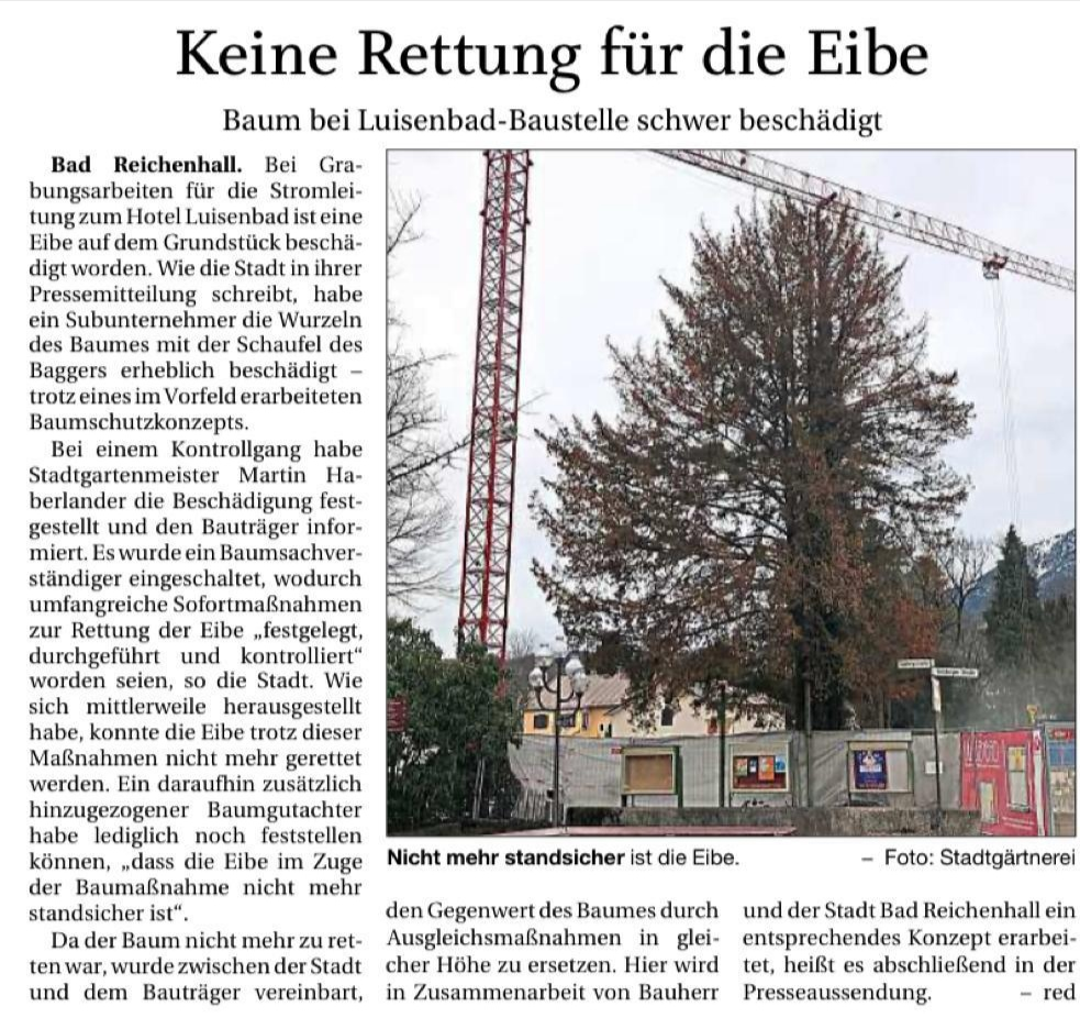 Eibe bei Luisenbad-Baustelle schwer beschädigt